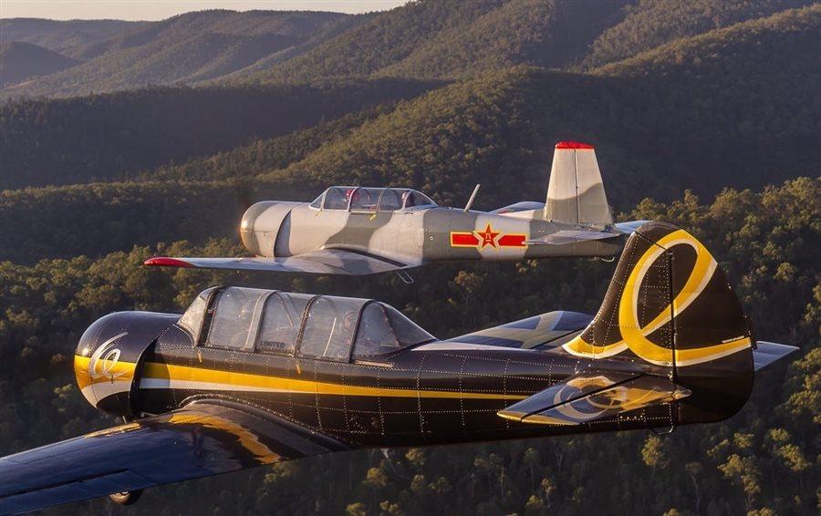 1991 Yakovlev Yak 52 Aircraft