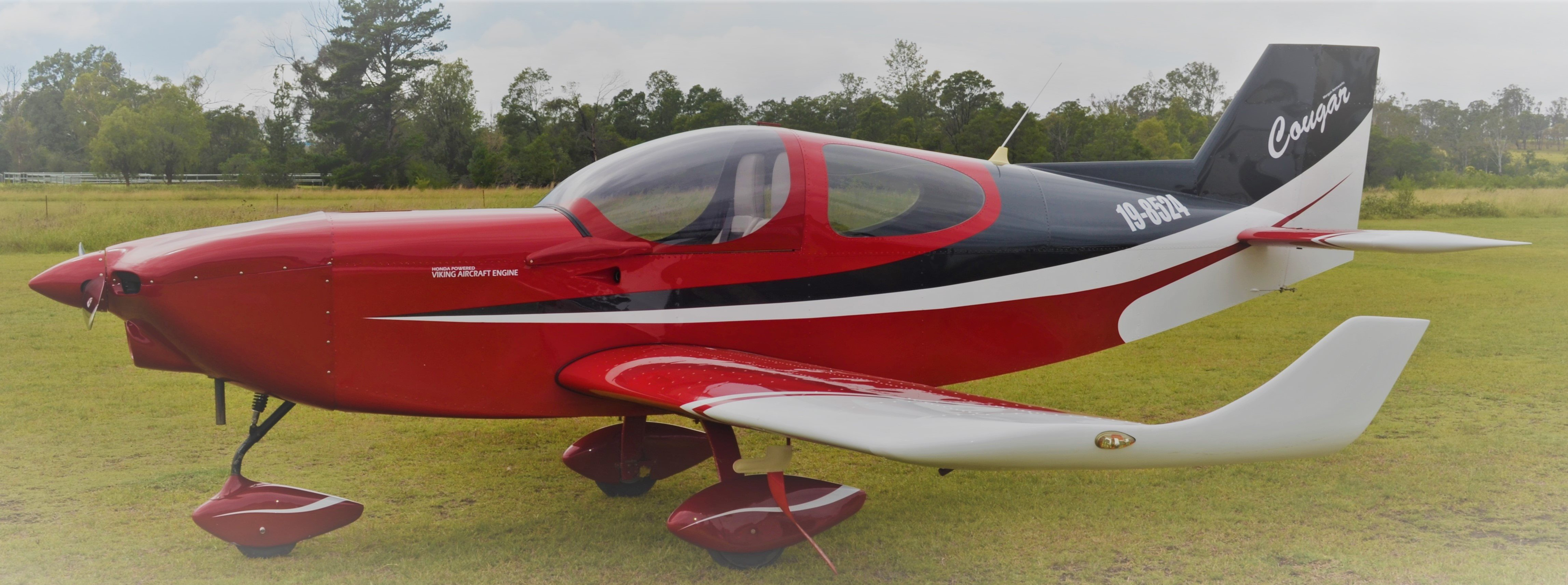 2014 Wedgetail Aircraft Cougar (Formally Morgan Aeroworks)