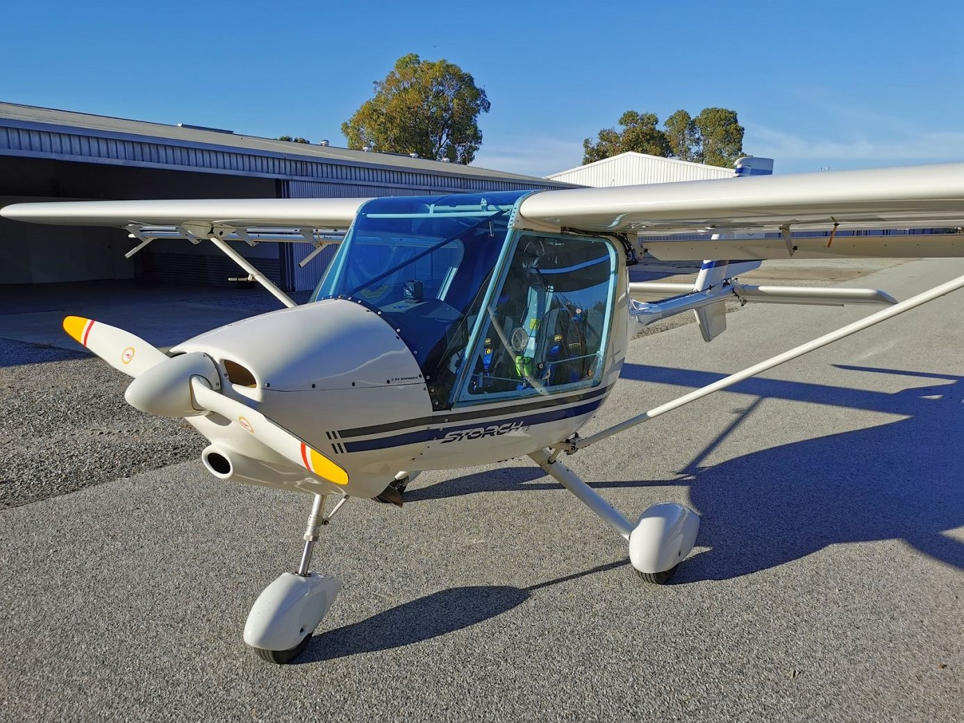 2010 Fly Synthesis Storch Aircraft