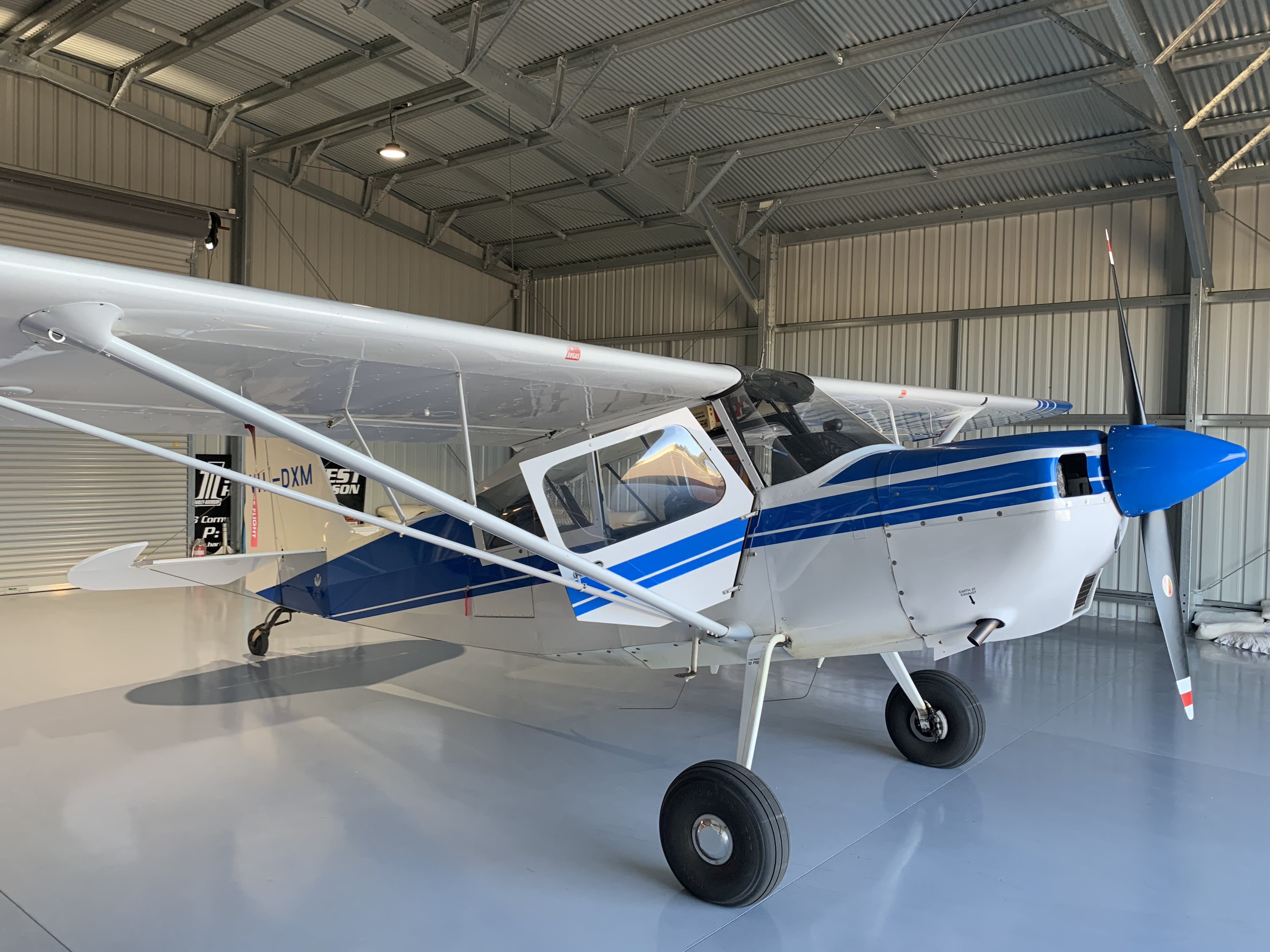 An American Champion Scout aircraft