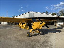 1976 Piper Cub Aircraft
