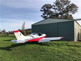 2005 Pioneer 300